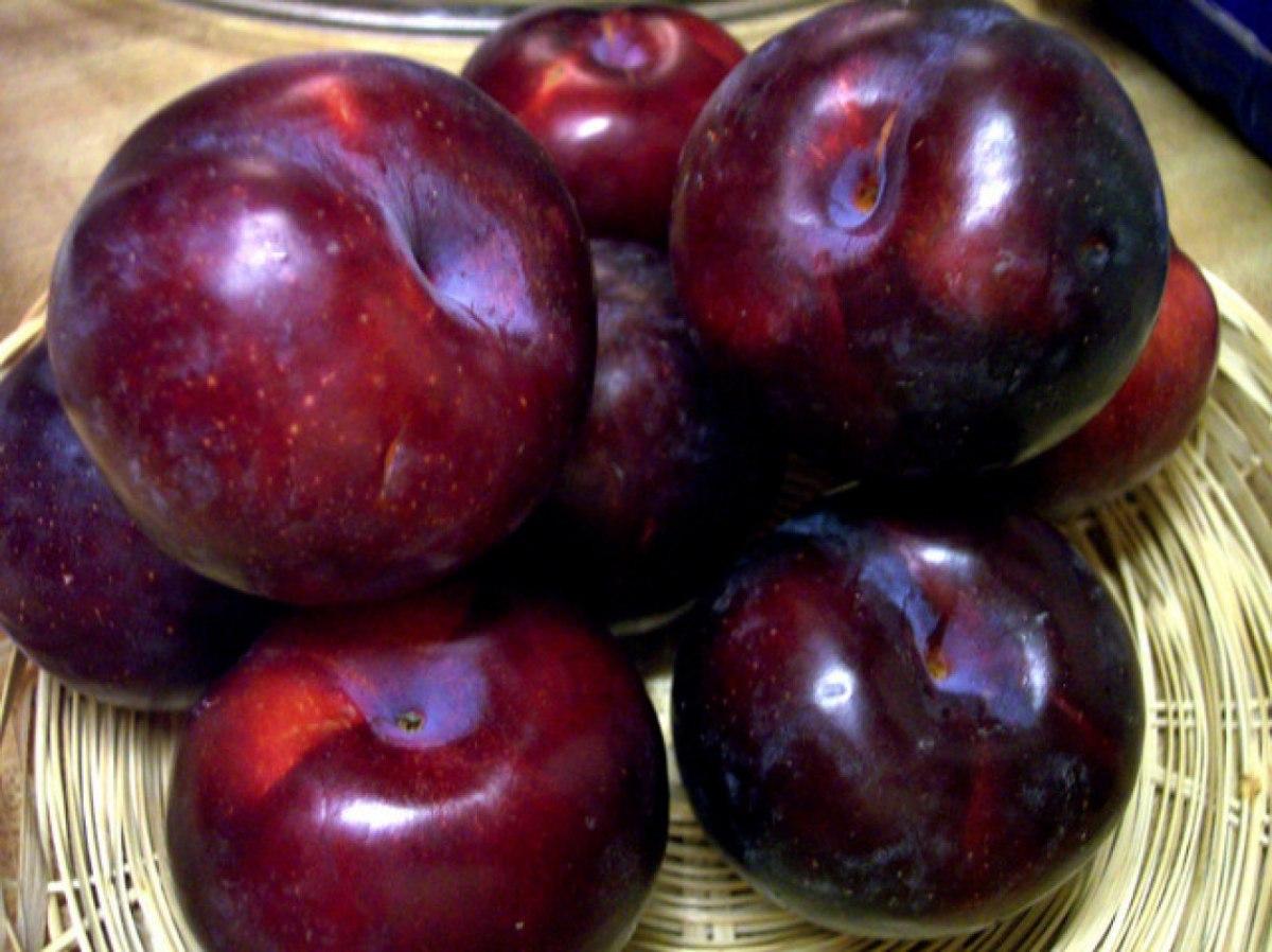 nombres de frutas ciruela